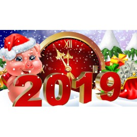 C НОВЫМ 2019 ГОДОМ И РОЖДЕСТВОМ!
